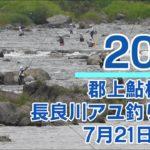 【長良川】第11回 郡上鮎杯争奪 清流長良川アユ釣り大会 予選 (2019年7月21日)