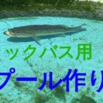 ブラックバス用のプールの作り方2万円以下 How to make a pet bass pool for less than $150 PepperChan