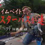 琵琶湖モンスターバスVSスイムベイト Hunt Giantbass with swimbait