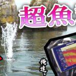 琵琶湖のド真ん中に超魚群発見☆驚愕の映像を撮影した!