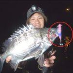 毎投釣れる!?ホタルイカパターンの釣りで大爆釣!
