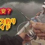 激安バス釣りガイド?ブラックバスボート釣り木崎湖ユウキガイドサービスで釣りまくる