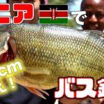 ケニアでカバ見ながらブラックバス釣ってさばいて食べる!?【前編】