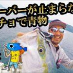 【釣りよかコラボ】ガバチョで青物フィーバーが止まらない!