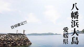 【愛媛・八幡浜大島】貸切確定の離島堤防でまったり五目釣り!【秘境】