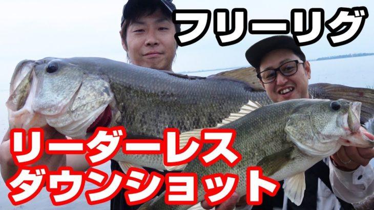 フリーリグとリーダーレスダウンショットリグでデカバスが釣れた【琵琶湖バス釣り、ビッグパドル】