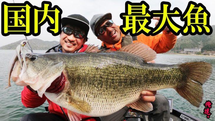 【60チャレンジ】国内最大魚を釣り上げた!【緊急告知アリ】