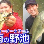 【バス釣り 夏】梅雨の野池をトップ&ワームで釣る!