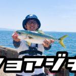 和歌山の海釣り公園でショアジギング!