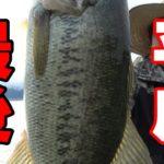 平成最後に釣れたブラックバスはこの魚!!【琵琶湖バス釣り】