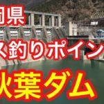 秋葉ダム  静岡県 バス釣りポイント ブラックバス