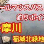 多摩川 稲城北緑地公園  スモールマウスバス釣りポイント  ブラックバス
