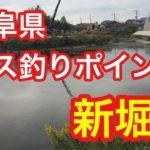 新堀川  岐阜県 バス釣りポイント ブラックバス