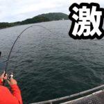 海釣り公園泳がせ釣りに子供もビビる超怪物を釣りあげろ❗