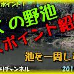 近くの野池でバス釣り ポイント紹介♪ 神社池 大阪府