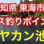 ヤカン池 愛知県 東海市 バス釣りポイント ブラックバス