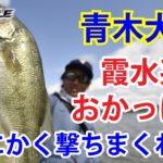 【公式】青木大介おかっぱり/霞水系 「とにかく見えるものに撃て!」