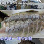 鮎釣り日記19 8 23