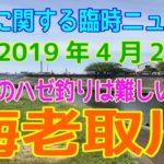 深神高広の釣りに関する臨時ニュース(海老取川)2019/4/28