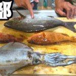 釣った4種の魚をシュウマイにしたら激ウマだった!