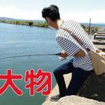 琵琶湖で超大物ブラックバスが釣れた! 4K映像 4K放送 新元号 令和になっても頑張ります