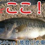 ブラックバスヒットシーン8 能登川水車村周辺で40up 【初冬の琵琶湖でバス釣り】