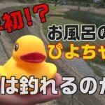 【バス釣り男】お風呂のアヒルを自作ルアー(羽根モノ)に魔改造して夏のブラックバスに挑む!!【トップウォーター?】