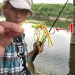 【バス釣り】 ブラックバス、ナマズ、雷魚が釣れる川