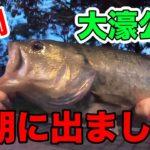 【福岡】大濠公園 バス釣り!素人が「巨大ブラックバス」を釣り上げる!