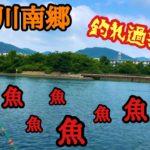 瀬田川南郷で釣りしたらパラダイスだった!釣れ過ぎ注意!