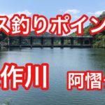 矢作川 阿慴ダム バス釣りポイント ブラックバス
