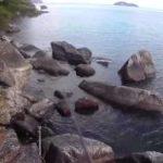 琵琶湖おかっぱり、初釣りでロクマル、10ポンドオーバーのブラックバス!!