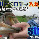 【バス釣り】大江川でベロディ入れ食い!初秋を攻略する巻き戦略!(大江川:大矢貴輝)