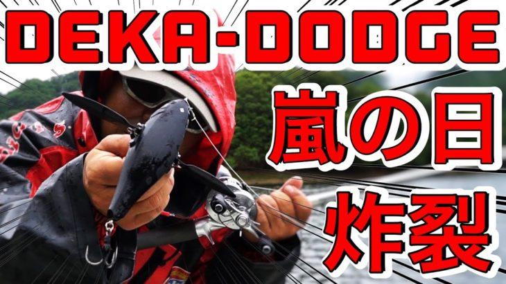 レイドジャパン「デカダッジ」に猛烈バイト!嵐の中、最近の巨大羽根モノを投げ続けた結果 #バス釣り #レイドジャパン #デカダッジ #トップウォーター