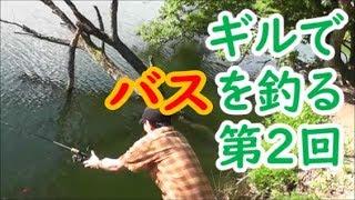ギルの泳がせ釣法#2  6月 野池でバス釣り「K場池 バス釣り部始動」編