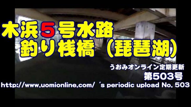 ブラックバスとギル 木浜5号水路釣り桟橋(2016/7)【水中動画の定期更新No.503】