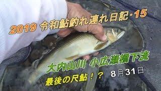 2019 -08-31鮎釣れ連れ日記15大内山川小広瀬橋下流&平瀬橋