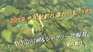 2019 09 08鮎釣れ連れ日記16シャクリ漁 坂津橋&紀勢大橋