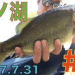 芦ノ湖 ブラックバス釣り ブリブリの放流バスを釣りまくれ!!の巻 #3