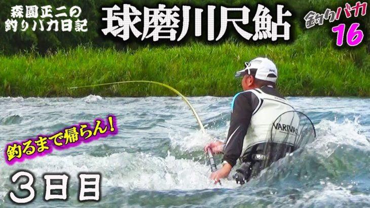 球磨川【尺鮎】釣るまで帰らん!3日目 森園正二の釣りバカ日記16-3 番外編
