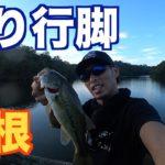 47都道府県釣り行脚【島根】【バス釣り】