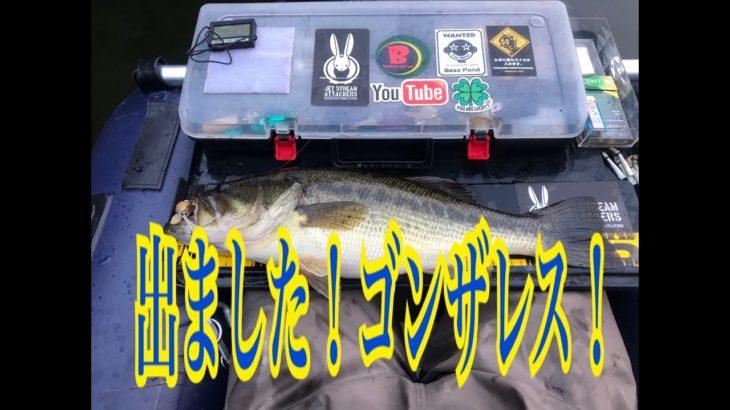 【バス釣り】【フローター】自作ハンドメトップウオーターで50up!平成最後?