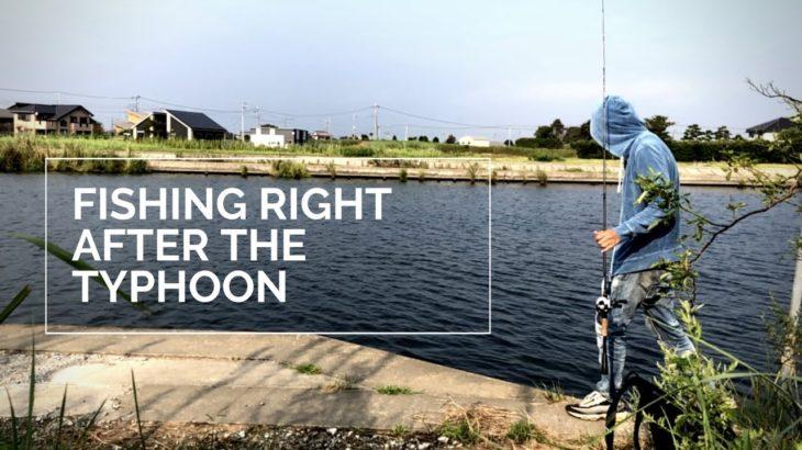 【バス釣り】霞水系 9月の台風後に様子見てきました