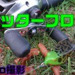 【フロッグゲーム】スカッターフロッグで野池のブラックバスを釣る!!【GoPro撮影】