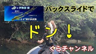 ハガー 【HUGGER】でバックスライド バス釣り 弥栄ダム~Hugger [HUGGER] backslide bass fishing Yasaka Dam