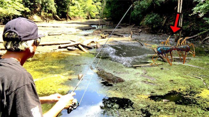 アマゾンみたいなジャングルで激レアバス釣りルアー「2WAY」だけで釣りした結果がキツすぎた!