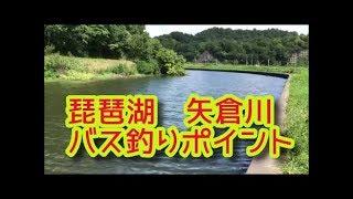 琵琶湖バス釣りポイント 矢倉川のグランド前 ブラックバス陸っぱりスポット