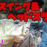 【レイドジャパン】ヘッドスライドを試投!レベルシャッドスプリンターで死闘!【バス釣り男】