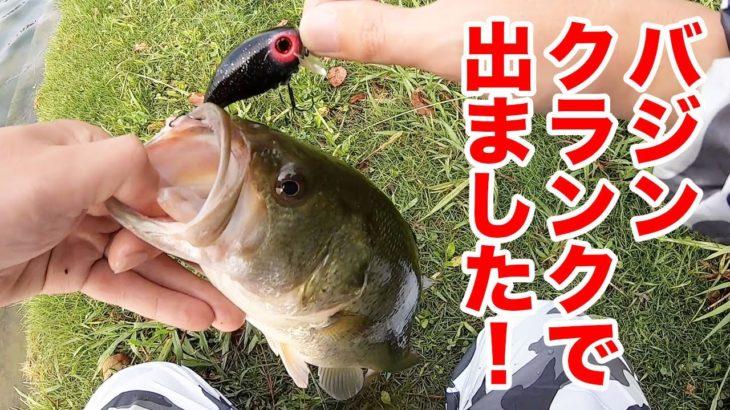 【福岡】バジンクランクでバスちゃん出てくれました!【バス釣り】【大濠公園】