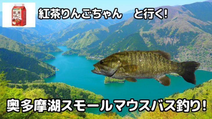 初心者が奥多摩湖にスモールマウスバスを釣りに行った結果・・・
